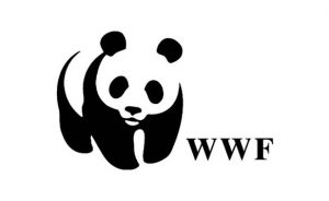 WWF Education funding lessons with Buddy4Study