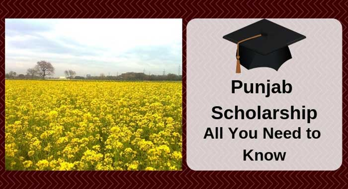 Punjab Scholarship - All You Need to Know