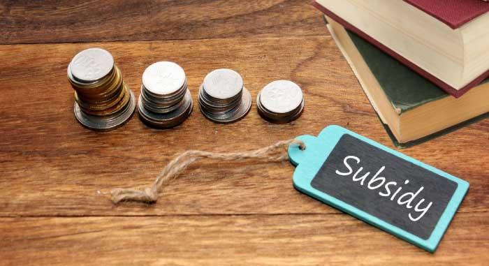 Education Loan Subsidy