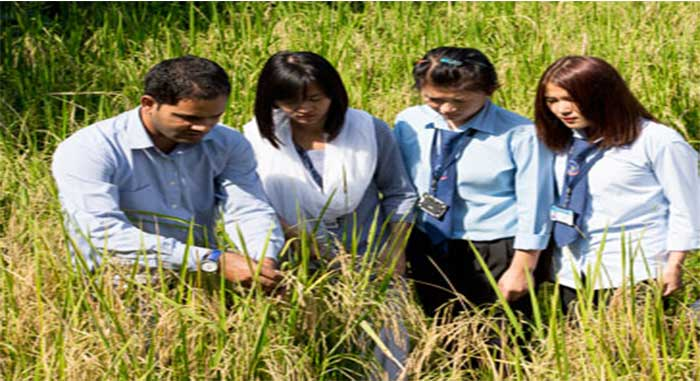 Scholarships for agriculture students