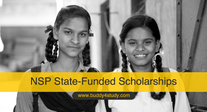 NSP state-funded scholarships